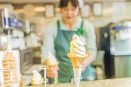 soft serve ice cream machine buyer guide, soft serve frozen yogurt machine reviews, start a soft serve ice cream business, how to start a soft serve business, starting a soft serve ice cream business