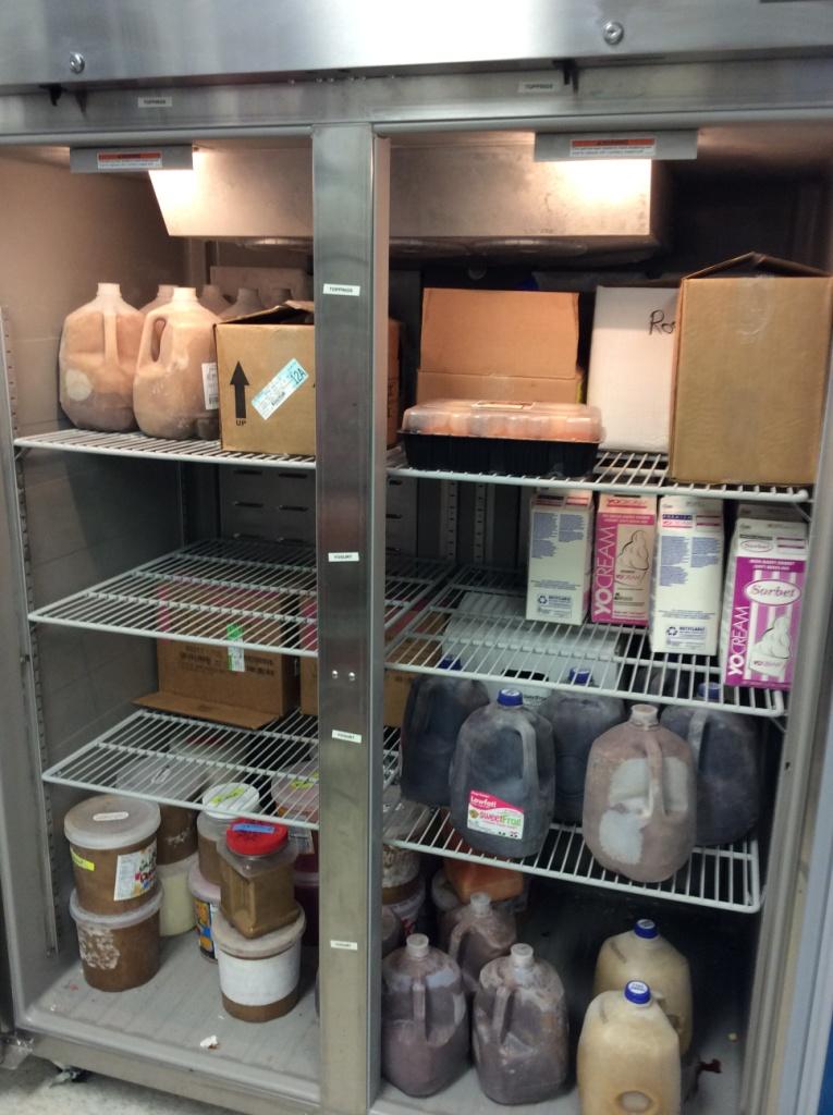 used 2 door yogurt store freezer